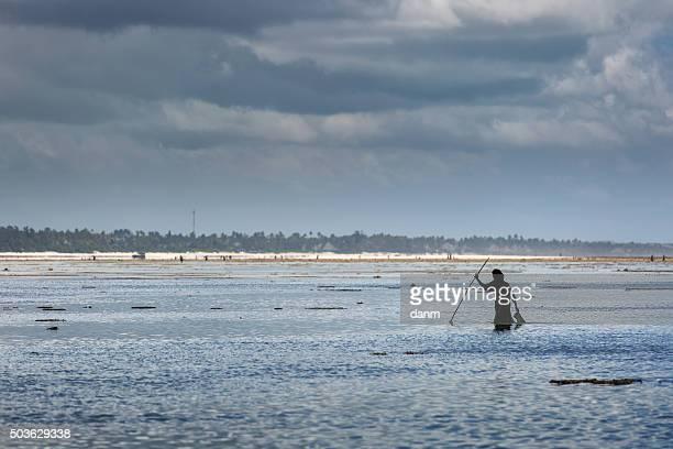 People of a Zanzibar village on ocean to fish on low tide