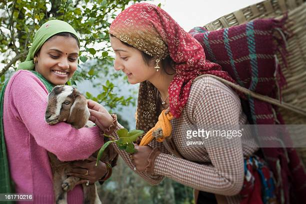 People of Himachal Pradesh: Beautiful young women with goat kid