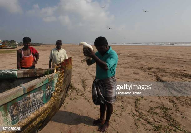 People of the Banbarvanpetha village of Srikakulam district celebrate Dussehra by worshiping their boats and offering cocks as a sacrifice in Andhra...