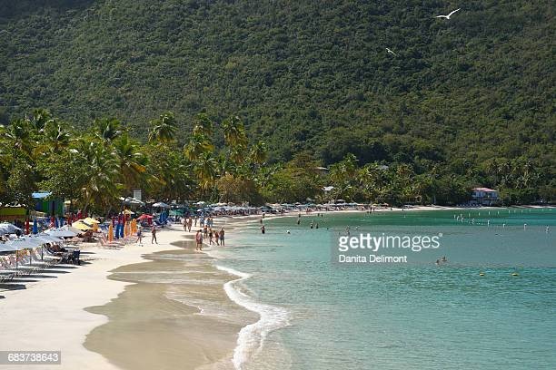 people on beach at cane garden bay, tortola, sandy cay, british virgin islands - cane garden bay stock pictures, royalty-free photos & images