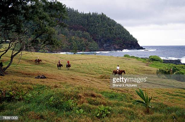 people on horseback, hana ranch, maui, hawaii - maui stock pictures, royalty-free photos & images