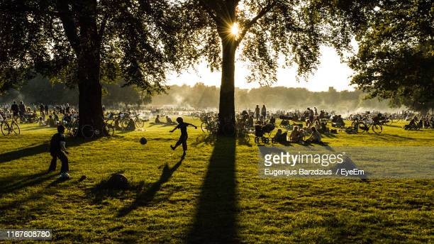 people on land in park at sunset - zealand denmark stock pictures, royalty-free photos & images