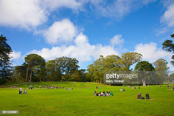 People on lawn in San Francisco's major park