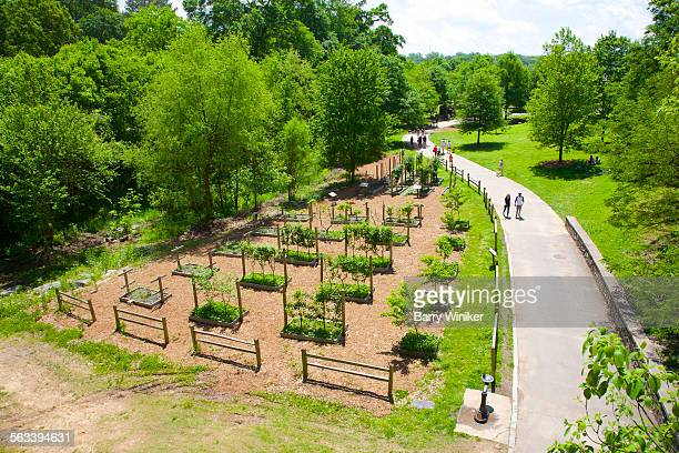 people on park path seen from above, atlanta - piedmont park atlanta georgia stock pictures, royalty-free photos & images