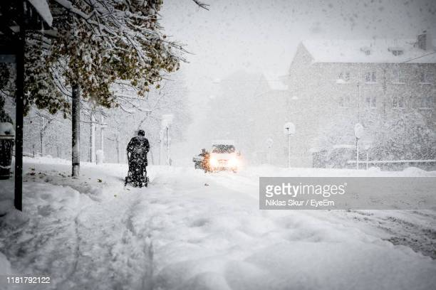 people on snow covered land by trees in city during winter - extreem weer stockfoto's en -beelden