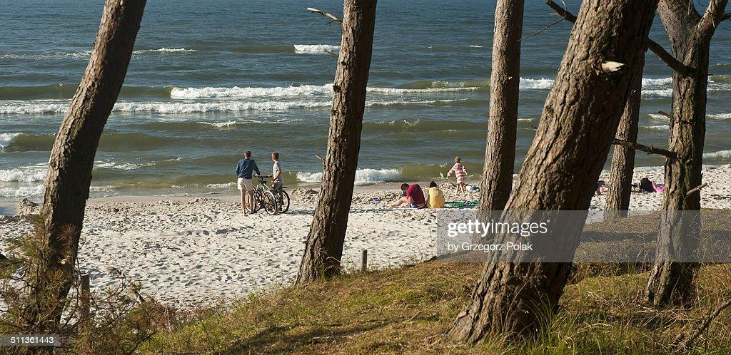 People on the beach : Stock Photo