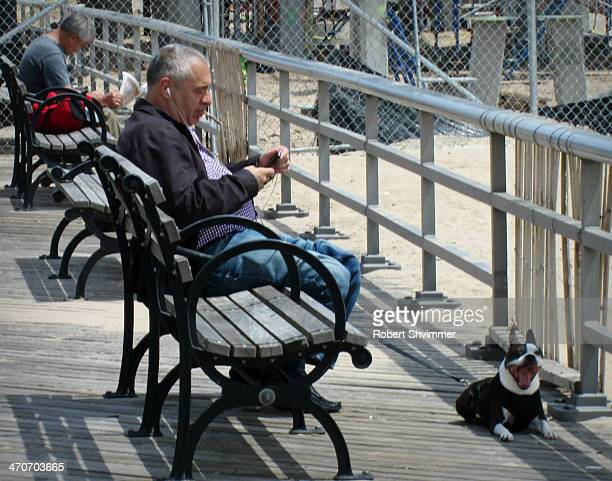 People & pets relaxing on the boardwalk in Brooklyn,NY