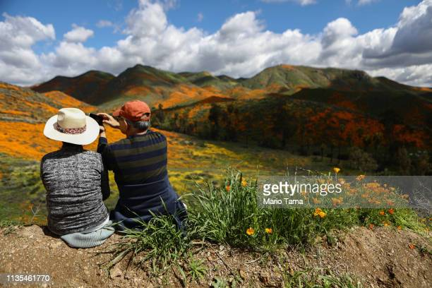 People photograph a 'super bloom' of wild poppies blanketing the hills of Walker Canyon on March 12 2019 near Lake Elsinore California Heavier than...