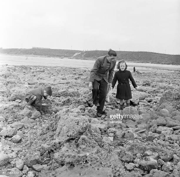 People picking whelks in Sunderland Tyne and Wear 28th April 1954