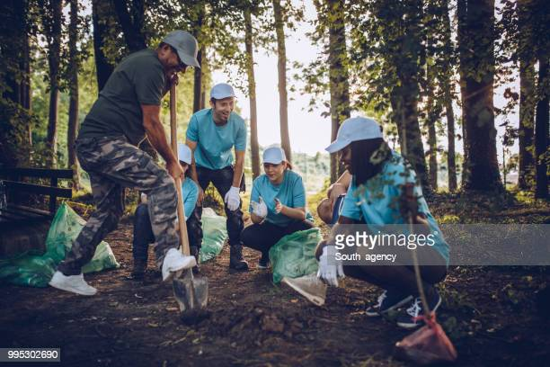 people planting tree in park - planting stock pictures, royalty-free photos & images