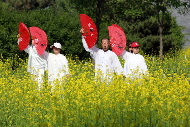 CHN: People Practice Tai Chi Beside Rapeseed Flowers In Shenyang