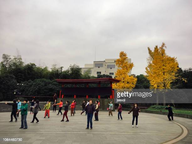 People practicing tai in Shanghai China