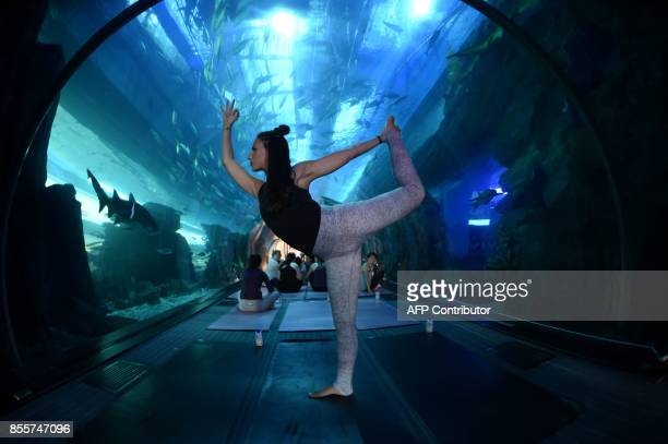 People practise yoga at the aquarium of Dubai Mall in the United Arab Emirate on September 30 2017 / AFP PHOTO / GIUSEPPE CACACE