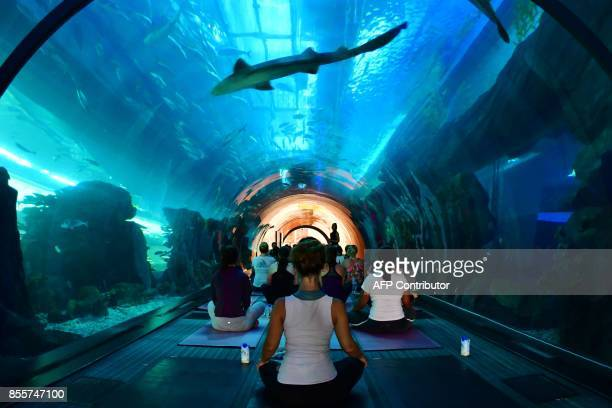 TOPSHOT People practise yoga at the aquarium of Dubai Mall in the United Arab Emirate on September 30 2017 / AFP PHOTO / GIUSEPPE CACACE