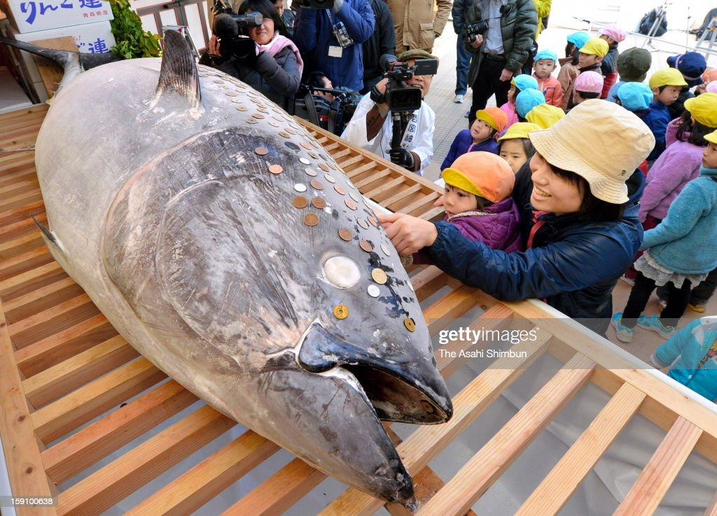 People put coins on the offered frozen bluefin tuna at Nishinomiya Shrine on Janaury 8, 2013 in Nishinomiya, Hyogo, Japan. It is said that business goes well by placing coins onto the body, the tuna will be displayed by January 11 then processed and distributed.