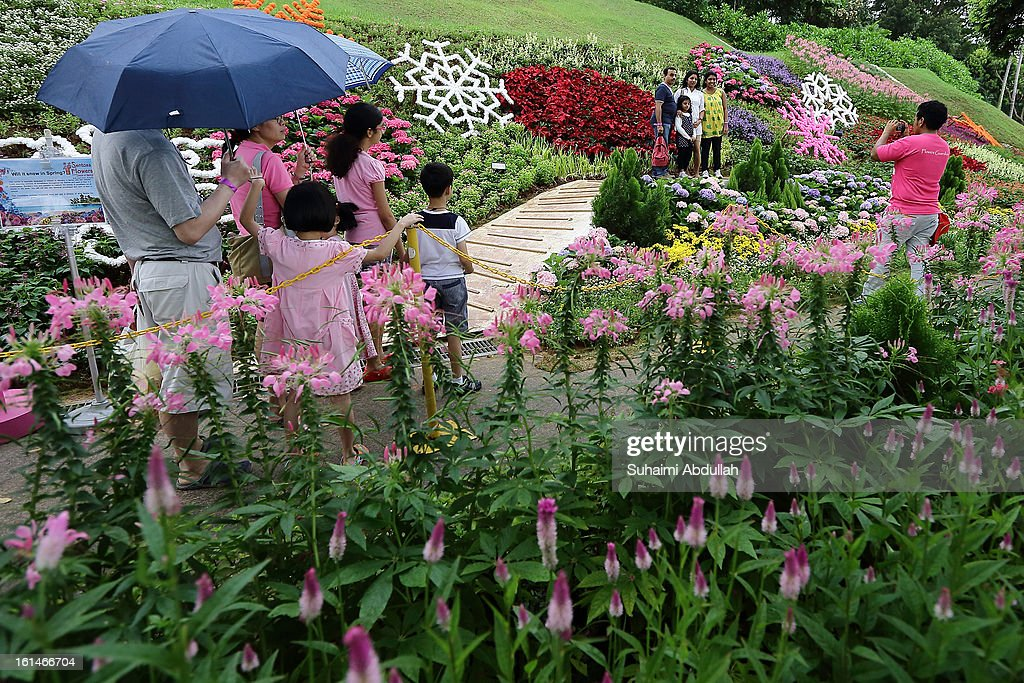 People queue up to take photograph in front of a flower display at the Sentosa Flowers exhibition at Palawan Beach on February 11, 2013 in Singapore. Millions of spring flowers decorate the island in celebration of the Chinese New Year, the year of the Snake.