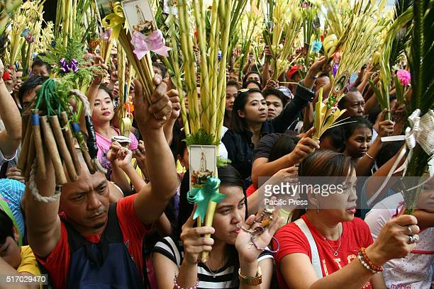 People raise their palm fronds in Quiapo Catholic devotees flocked Quiapo church in Manila as they wave palm fronds while being blessed by priests...