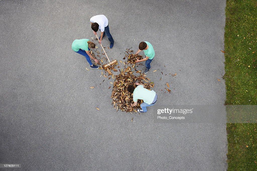 Pessoas raking folhas : Foto de stock