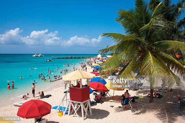 people relax and swim at doctor's cave beach - montego bay stock pictures, royalty-free photos & images