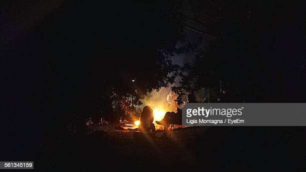 People Relaxing Around Bonfire In Forest At Night