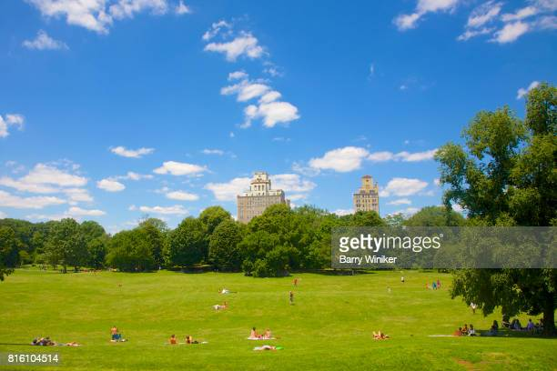 people relaxing in brooklyn's prospect park - プロスペクト公園 ストックフォトと画像