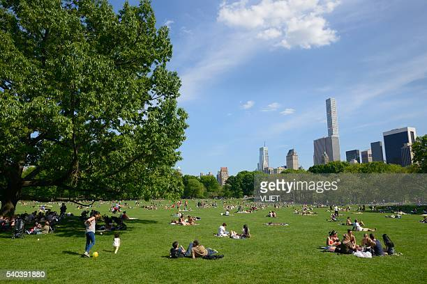 People relaxing in Central Park, Sheep Meadow