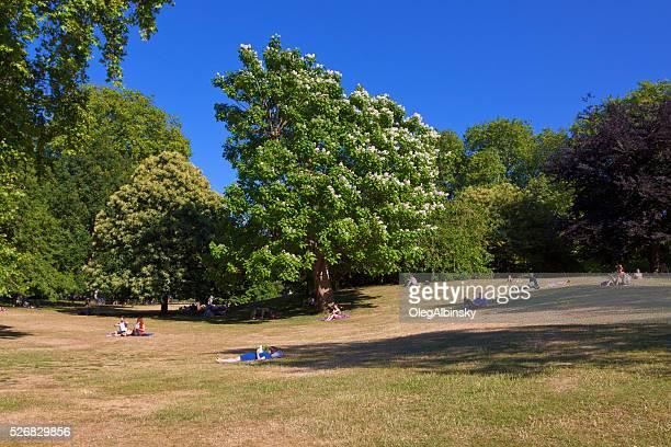 人にリラックスできる「セントジェームスパーク、ロンドン、イングランドます。 - ロンドン ザ・マル ストックフォトと画像