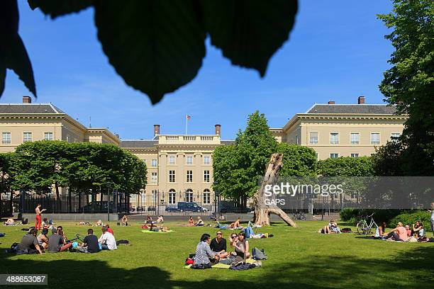 people relaxing in the palace garden - noordeinde palace stock pictures, royalty-free photos & images