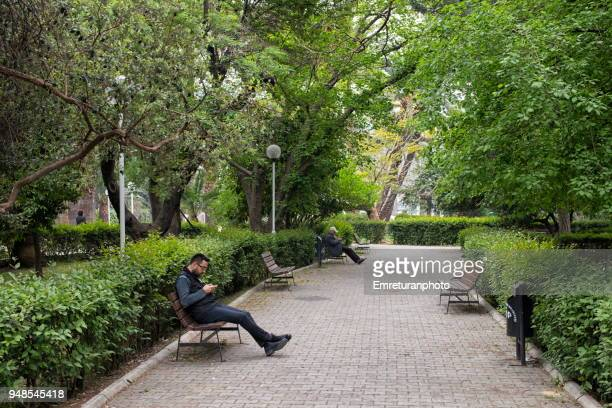 people relaxing on a bench in a park in the city. - emreturanphoto stock pictures, royalty-free photos & images