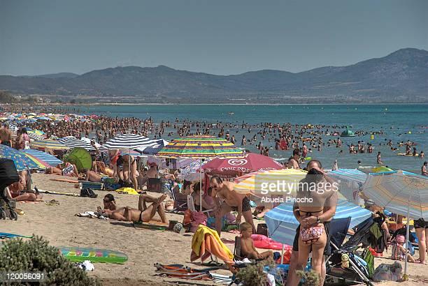 people relaxing on beach - カステリョン ストックフォトと画像