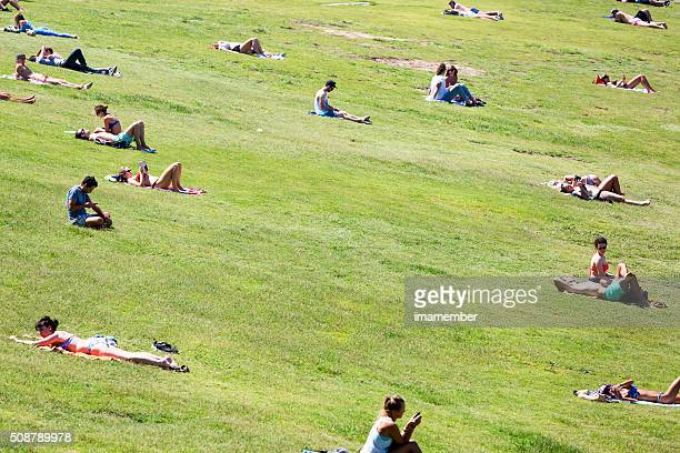 People relaxing on the grass, Bondi beach park, copy space