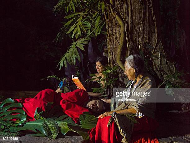 people relaxing under a tree - las posas stock pictures, royalty-free photos & images