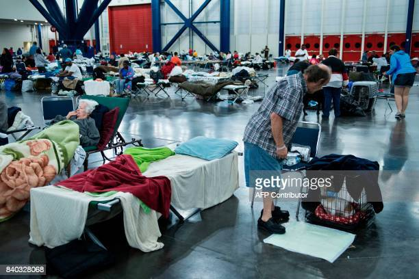 People rest in a shelter in the George R Brown Convention Center during the aftermath of Hurricane Harvey on August 28 2017 in Houston Texas Rescue...