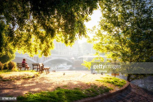 people resting in front of vltava river in prague - vltava river stock photos and pictures