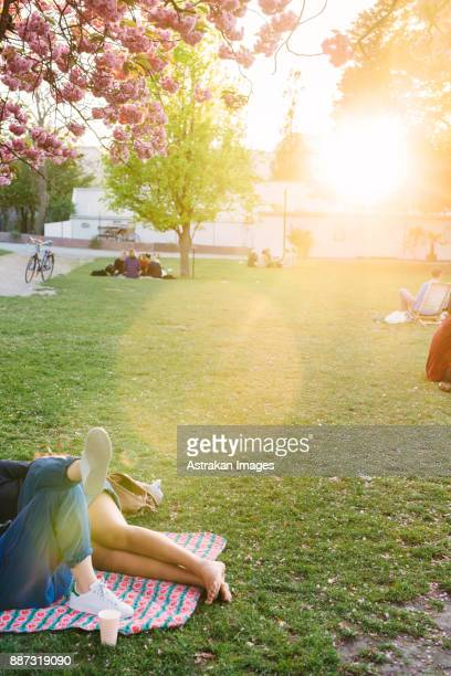 People resting in park