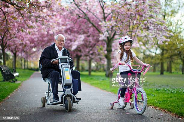 People ride bicycles under cherry blossom trees in full bloom at Greenwich Park in London on April 11 2014 as temperature hits 17C at weekend and...