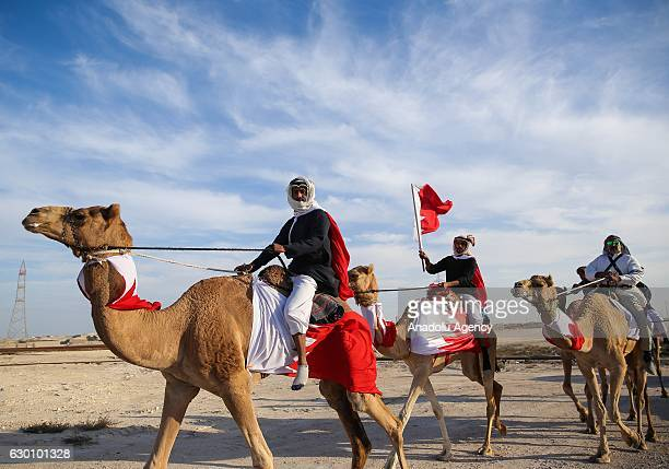 People ride camels during the Bahrain National Day celebrations in Manama's Sukhair district Bahrain on December 16 2016