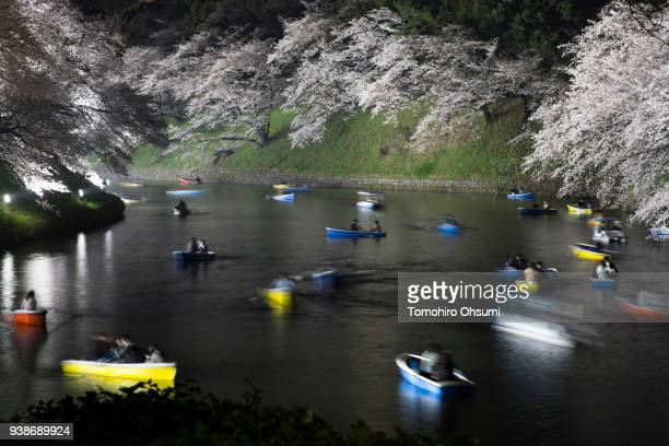 People ride row boats near cherry trees in bloom at night at the Chidorigafuchi moat on March 26 2018 in Tokyo Japan Japan's Meteorological Agency...