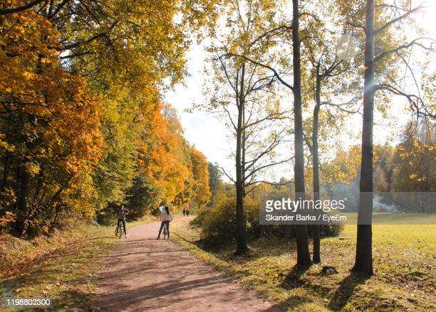 people riding bicycle on street during autumn - incidental people stock pictures, royalty-free photos & images