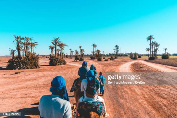 people riding camels in desert - marrakech photos et images de collection