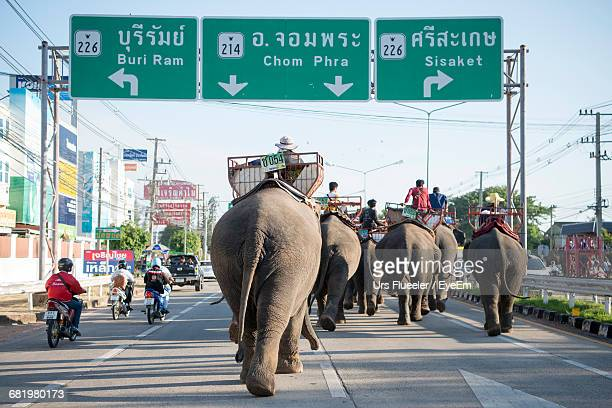 People Riding Elephant On Road In City