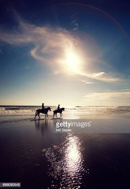 people riding horses near the sea