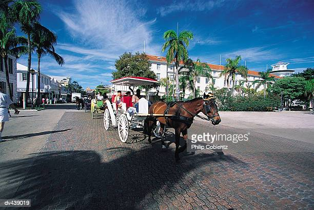 people riding in horse-drawn carriage - ナッソー ストックフォトと画像