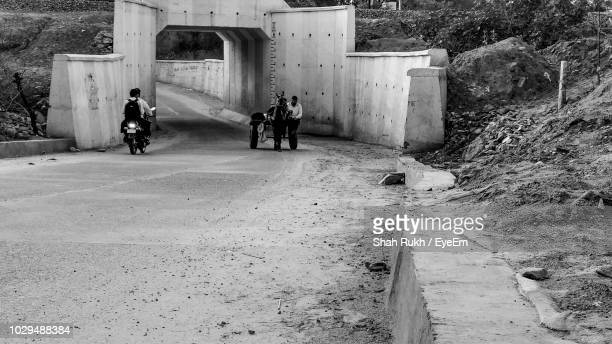 people riding vehicles on road - one animal stock pictures, royalty-free photos & images