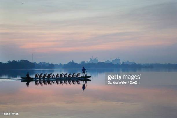 people rowing on lake against during sunrise - rowing stock pictures, royalty-free photos & images