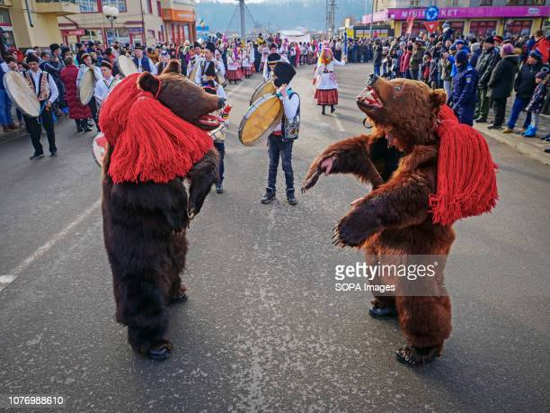 People seen dressed in bear skins dancing during the event At the end of the year and the New Year ís Day people in Trotus Valley in Romania dress...