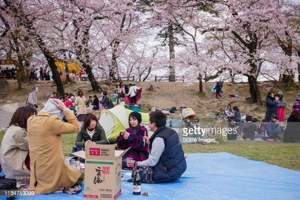 People seen enjoying a cherry blossom atmosphere during the festival Spring arrives and 800 Sakura cherry trees spread in the area around Okazaki...