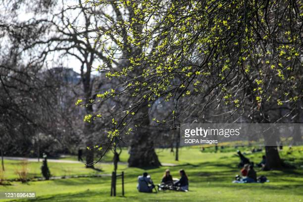 People seen relaxing in St James' Park.