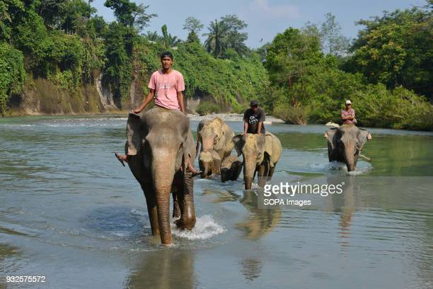 People seen riding elephants At Elephant and Ecotourism Gunung Leuser National Park tourists can help bathing elephants on the outskirts of Gunung...