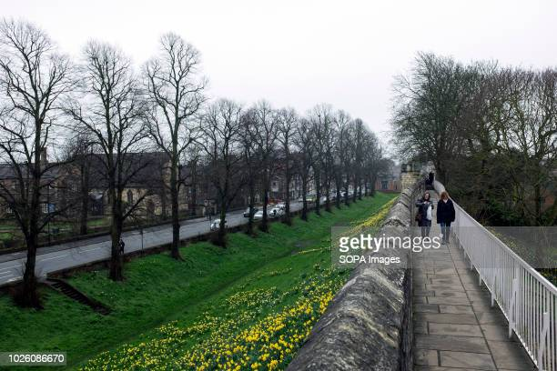 People seen walking on the ancient wall site of the city York is an ancient city with rich history in North Yorkshire England York is the traditional...